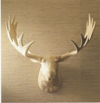 Wood Moose Trophy Head, Pop Deluxe