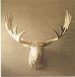 Wood Moose Trophy Head, Pop Deluxe