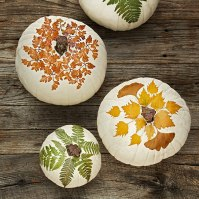 Decoupage Pumpkins, Courtesy Studio D