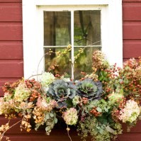 Fall Window Box, Courtesy Decor Amore