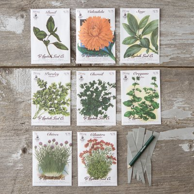 Terrain Kitchen Herbs Seed Collection 24