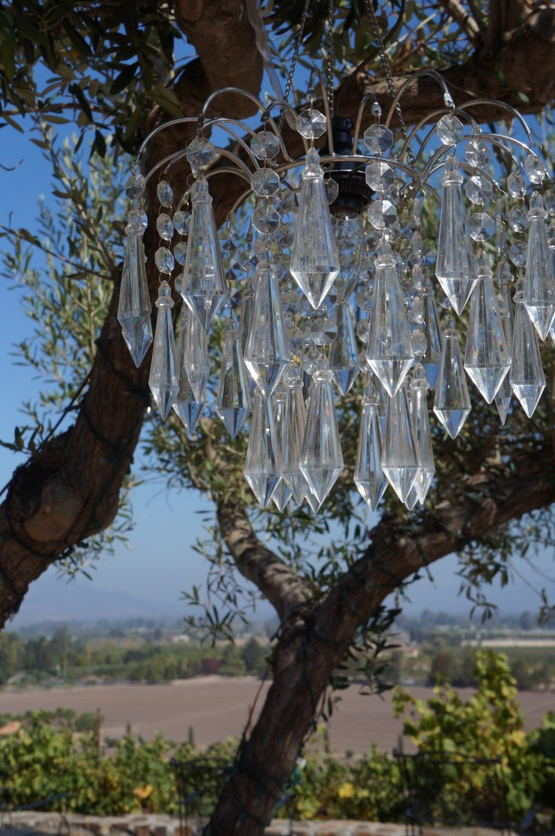 Chandelier hanging in tree at Viansa Winery